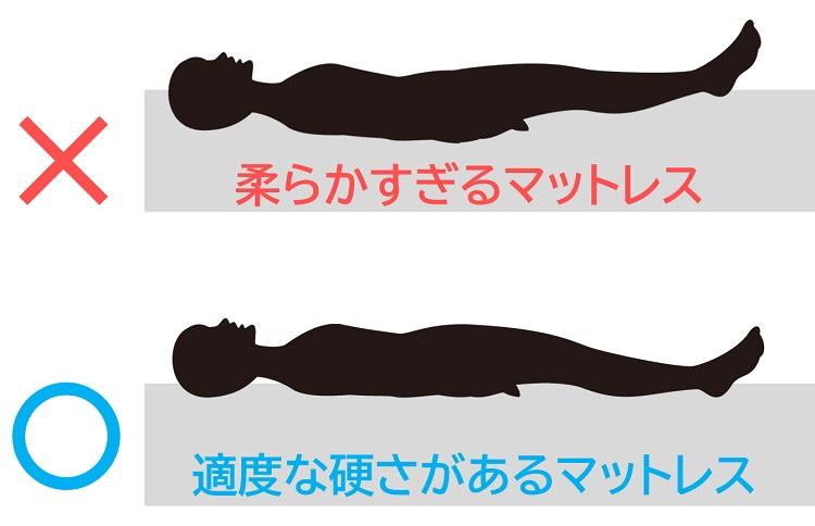 人間工学的に設計された構造が体圧を分散し骨格をまっすぐに